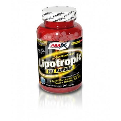 Lipotropic FAT Burner 100 kap