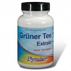 Phytochem Green tea - ekstrakt z zielonej herbaty 180 kap.